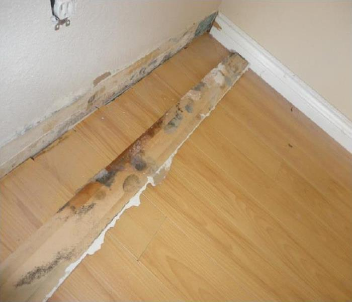 Oxnard home mold remediation Before