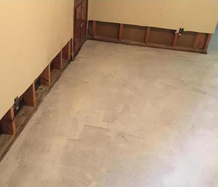 Mold Remediation In Oxnard After