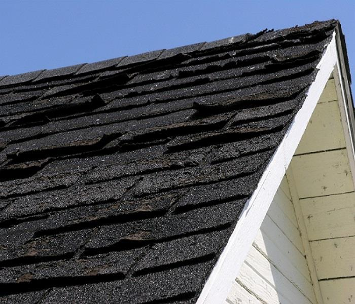 Leaky Roof Water Damage: Solved! What To Do About A Leaky Roof