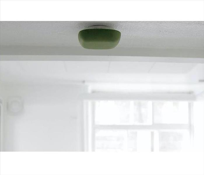 Fire Damage 8 Essentials: Smoke alarms with smart designs