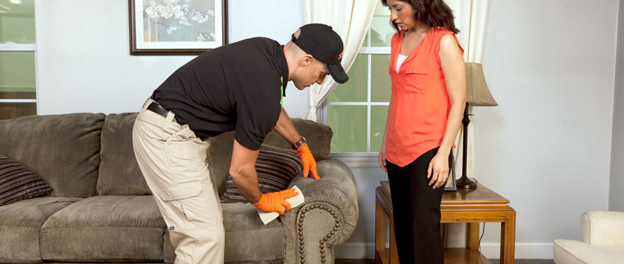 Oxnard, CA carpet upholstery cleaning
